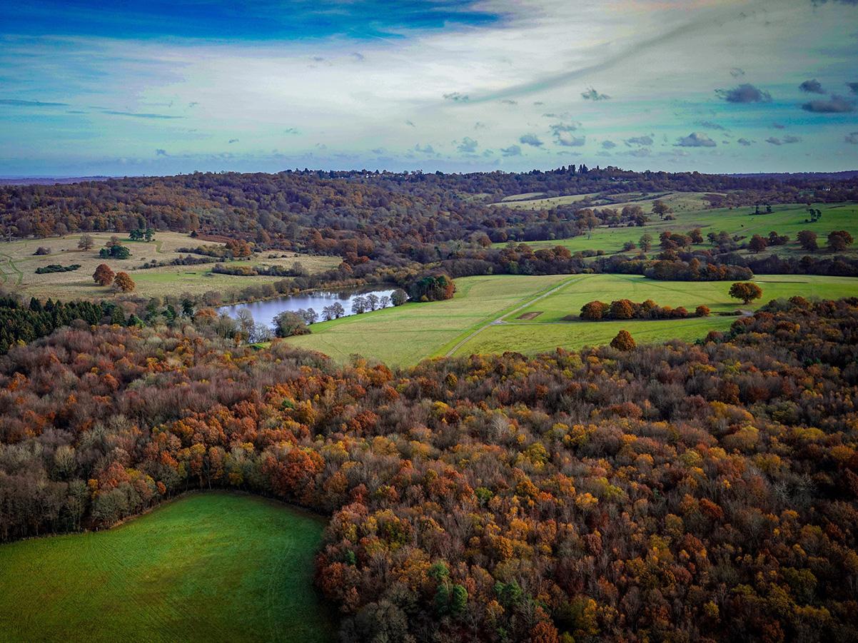 Drone Survey of Parkland
